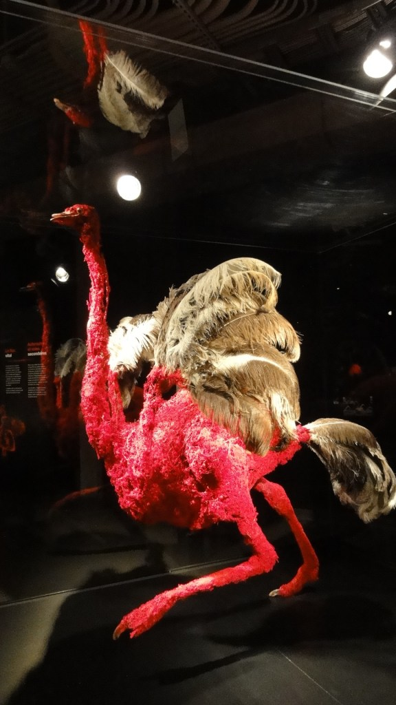 Animals_Inside_Out_Centre_des_Sciences_New_Exhibit_Preview (1)
