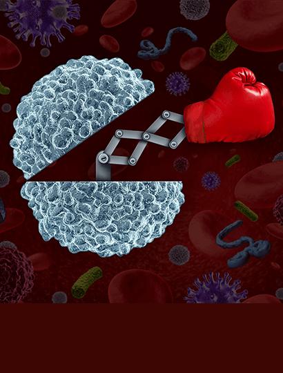 immune booster supplement