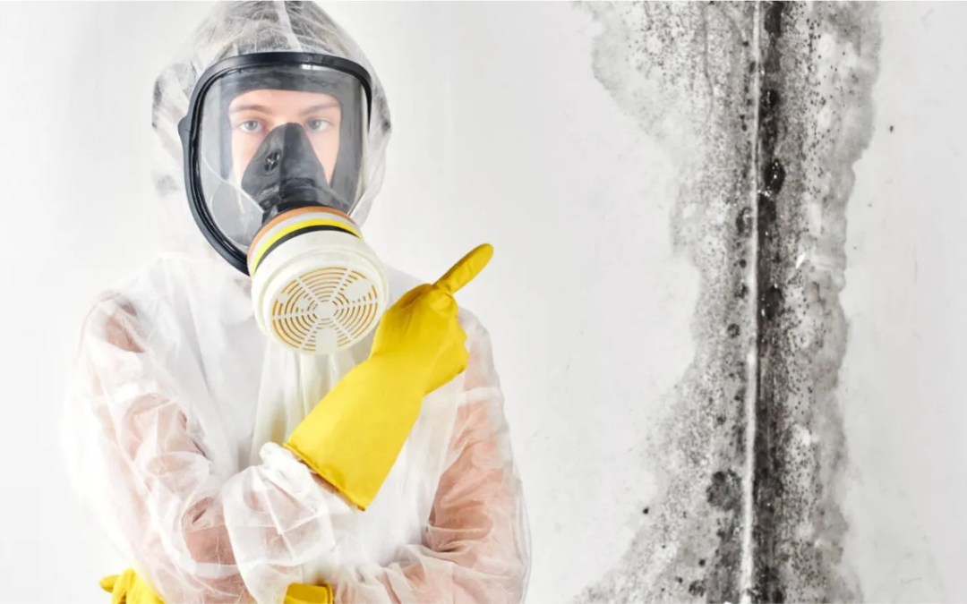 Why Water Damage in Our Homes Can Be Frightening
