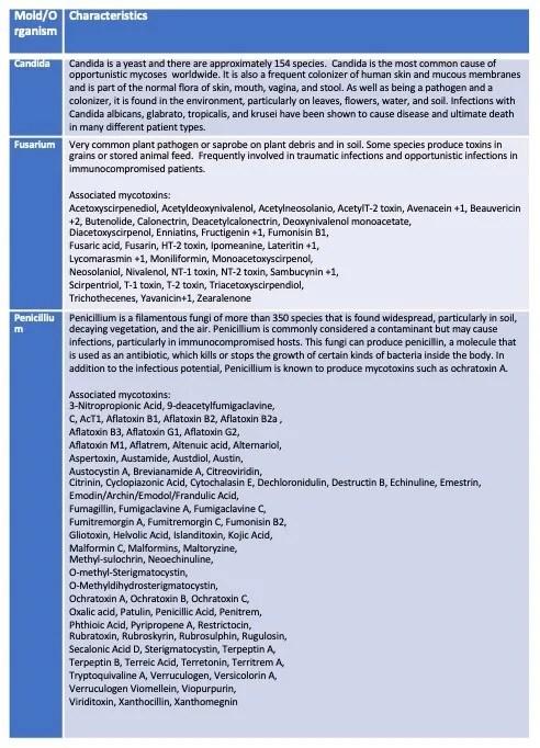 ImmunoLytics Mold Testing