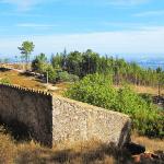 For_sale_terrain_near_Monchique_Portugal