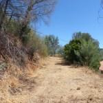Monchique property for sale