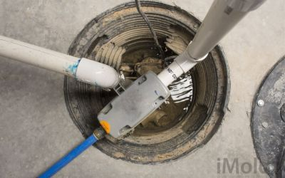 Sump Pumps, Water Damage, And Mold