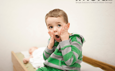 It's Mold?! The Surprising Effects Mold Has On Children