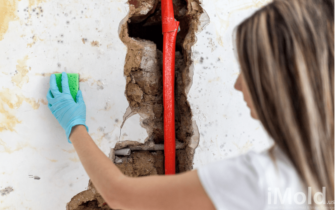 woman cleaning mold with a sponge next to a broken pipe