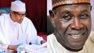 Buhari appoints 75-year-old Kingibe as Special Envoy to Chad, Lake Basin