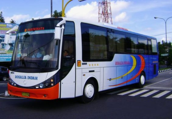 Limited Edition, Digunakan sebagai bus pariwisata. Lihatlah Jendelanya.. dijamin mata dimanjakan oleh pemandangan sepanjang perjalanan :mrgreen: