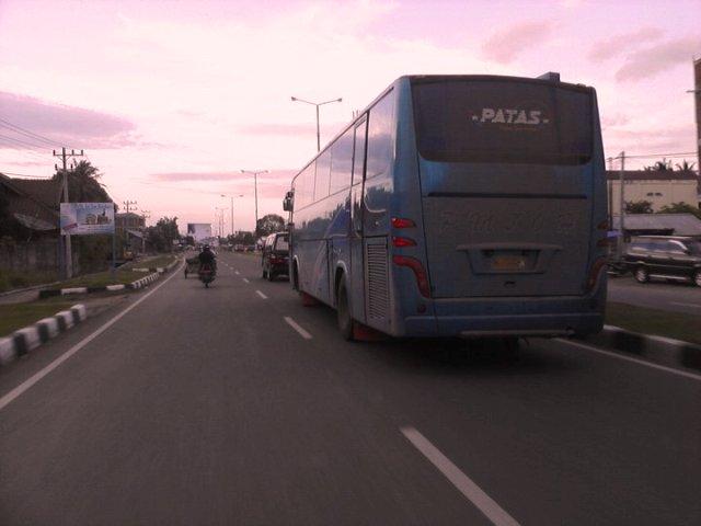 Bus – bus PO. PMTOH 11