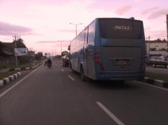 Bus - bus PO. PMTOH 11