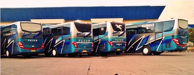 Bus – bus PO. PMTOH 4