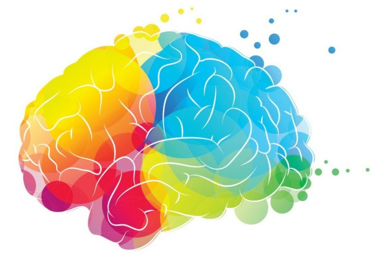 colorful cartoon image of a brain