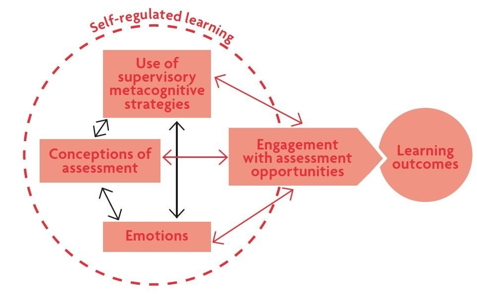 Figure 1 showing students' conceptions of assessment.