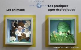 Le Concours général agricole au 57ème Salon de l'agriculture.