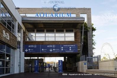 aquarium la rochelle 78