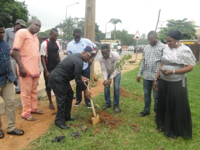 Hon. Agunbiade digging in preparation to planting a tree