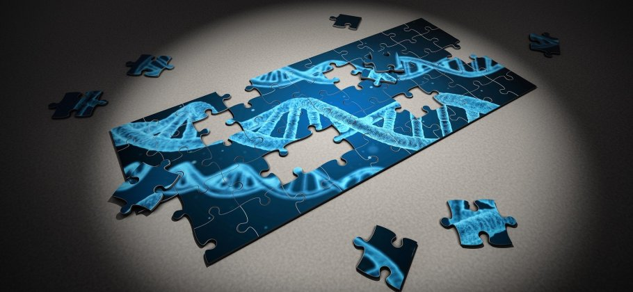DNA in a puzzle