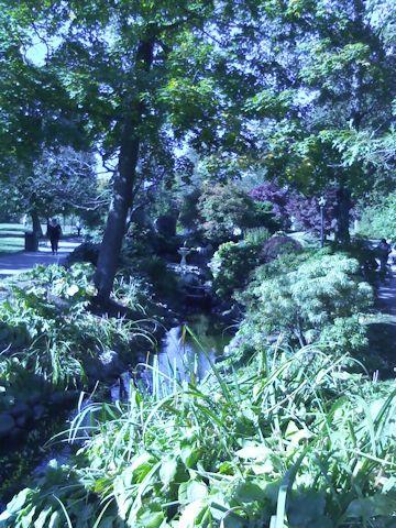 public-gardens-creek-c