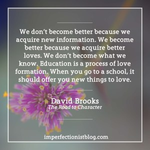 david-brooks-the-road-to-character-education-is-a-process-of-love-formation-the-imperfectionist