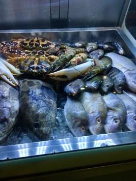 The Fish Market Area :)