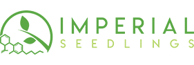 Imperial Seedlings - America's Best Source for Affordable Hemp Seedlings