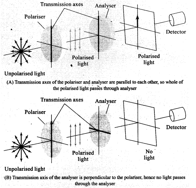 ncert-exemplar-problems-class-12-physics-wave-optics-5
