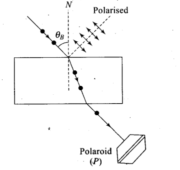 ncert-exemplar-problems-class-12-physics-wave-optics-3