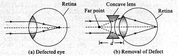 ncert-exemplar-problems-class-12-physics-ray-optics-and-optical-instruments-12