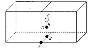 ncert-exemplar-problems-class-12-physics-electric-charges-fields-27