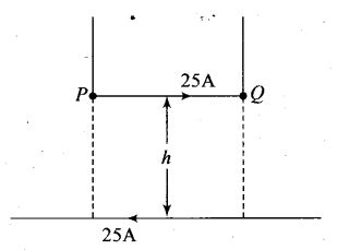 ncert-exemplar-problems-class-12-physics-moving-charges-and-magnetism-25