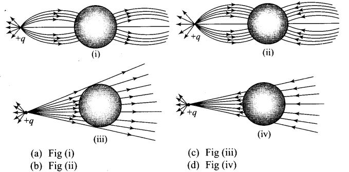 ncert-exemplar-problems-class-12-physics-electric-charges-fields-4