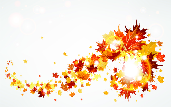 Pitbulls Fall Wallpaper 30 Most Beautiful Images Of Autumn Leaves For You