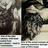 Comparison. Fake vs. Real.