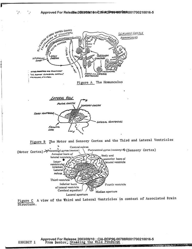 Declassified: CIA Explains Consciousness, the Matrix, How World is a Hologram, Telepathy