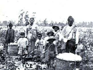 A Reality Check: Blacks Didn't  Love Slavery