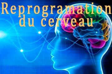 Reprogramation du cerveau