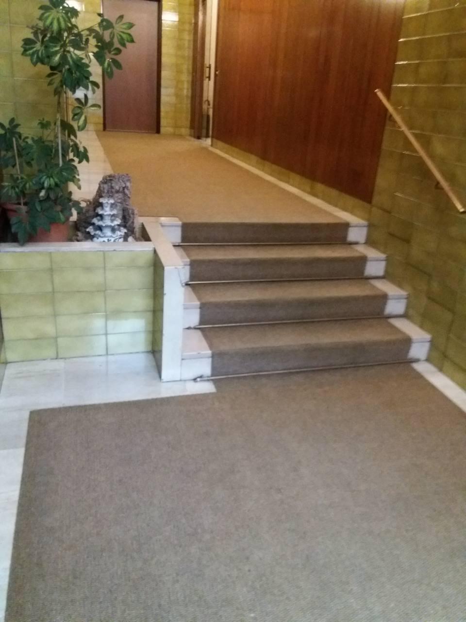 Lavaggio tappeto condominiale a Monza  Impresa di pulizie