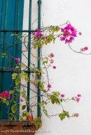 ventana-impresiones-del-mundo