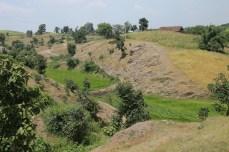 Felder auf felsigem, abschüssigen Terrain │ fields on rocky sloping land