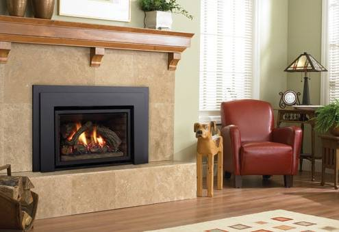 Regency Liberty™ L390EB Medium Gas Insert