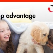 Heat Pump Rebates 2015