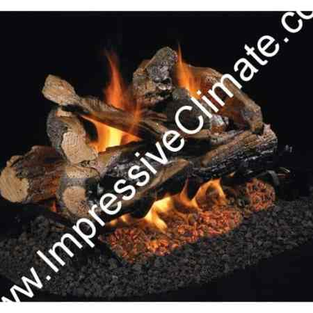 peterson-real-fyre-rugged-see-thru-logs-Impressive-Climate-Control-Ottawa-800x512