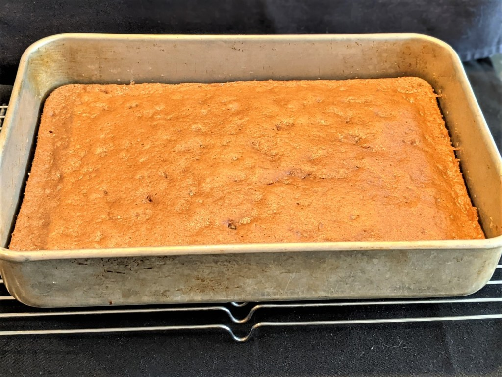 Baked cake in 9x13 pan