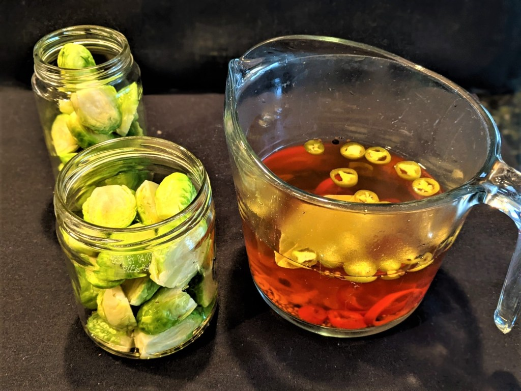 Two jars with sprouts and vinegar mixture in a measuring cup