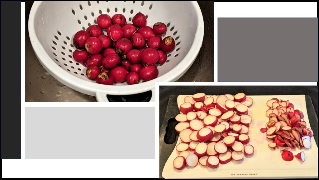 Radishes in colander and on cutting board