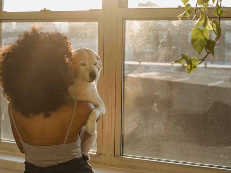 african american woman carrying dog under sunlight