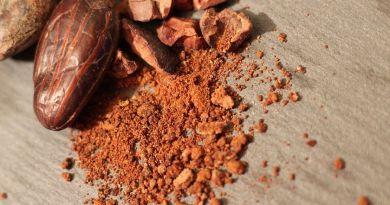 Et si… le cacao venait à disparaître ?