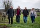 Vin bordelais : mille milliards de mille galères