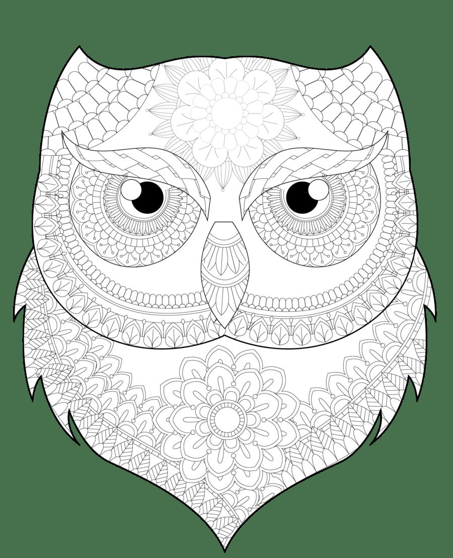 Mandala Búho 002 • IMPRIME MANDALAS