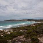 Just across the water, but a world away- 5 gute Gründe warum du Kangaroo Island nicht verpassen solltest!
