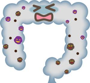 腸内環境悪化によるアンモニアの解毒は肝臓の大きな負担に